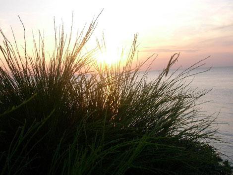 Naturwelt, das Meer