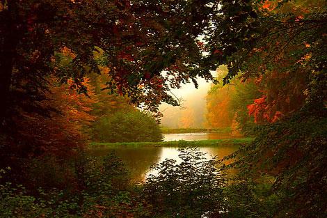 Herbsbäume mit See