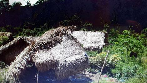 Traditionelle Unterkünfte in Dusun Tiol.