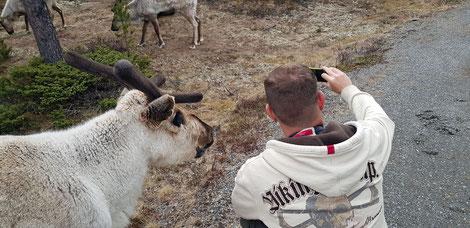 Selfi mit Rentier