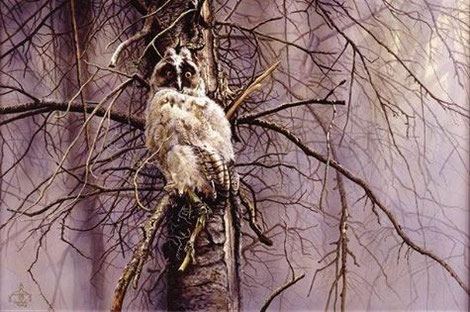 junge Waldohreule im Geäst - ein Ölbild 60 X 90 cm auf Leinwand.