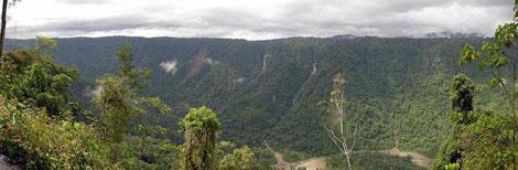 Amazonas Region
