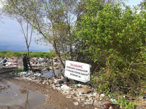 Müllauf Bali