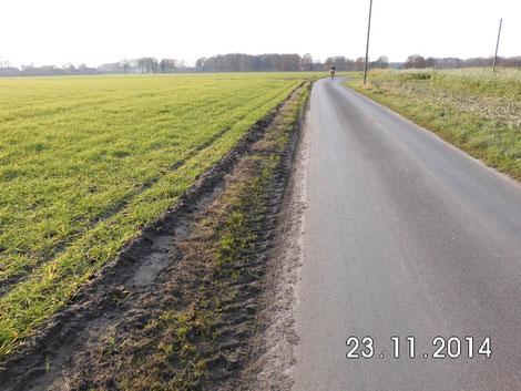 Gezielte Wegrandvernichtung, wie hier in Legden (Kreis Borken) zerstört die Überlebensmöglichkeiten für Fauna und Flora!