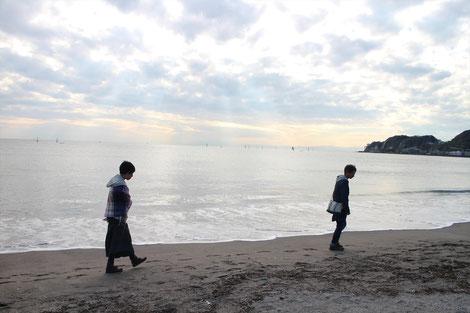 桜貝は鎌倉の浜で探します