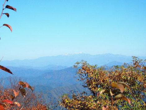 久しぶりに見る白山全貌です。                       日野山山頂も木々が成長し白山展望のイマージが変わって来ていますね。