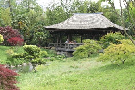 Bambouseraie d'Anduze jardin unique