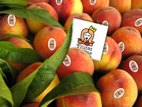 Simulación logotipo entre la fruta.