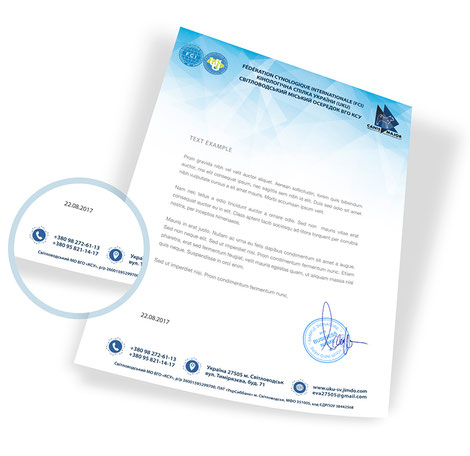 corporate style design, stars, sky, kennel club letterhead, canis major, order, price, FCI, UKU, photo, Svetlovodskiy department