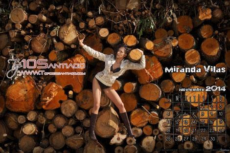 Calendario Virtual Noviembre / Otoño 2014