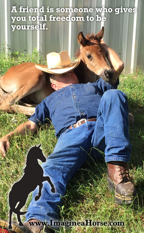 Allen doesn't take rearing this orphaned foal lying down - no, wait, yes he does.