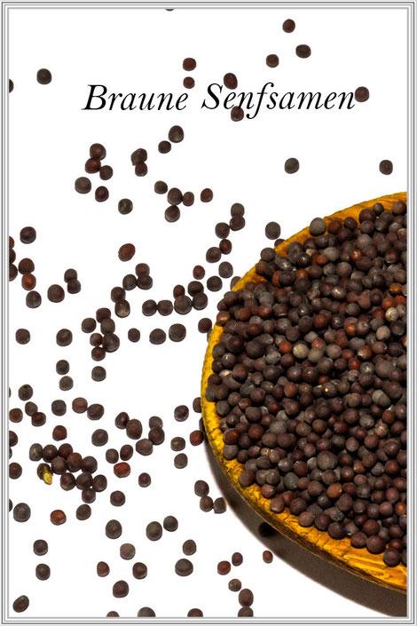 Verwendung der braunen Senfkörner-Senfsaat- Gewürzfibel und Rezepteblog © mjpics