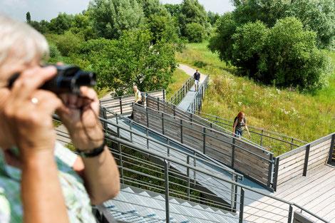 Vögel beobachten, Altmühlsee, Vogelinsel
