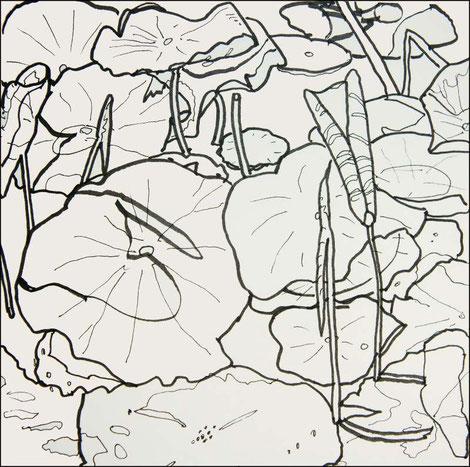 Lotus sacrés, carnet de dessin, 20 x 20cm, feutres encre de chine