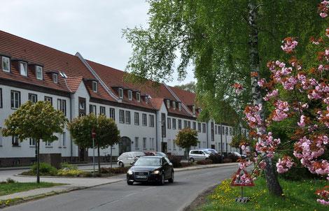Max-Reimann-Straße 11-19