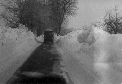 Schneeverwehungen an der Ladebower Chaussee (Foto: Gerald Halle)