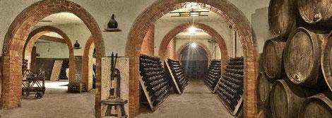 каталония экскурсия в винные погреба,  поездка в винные погреба пенедес, посещение винных погребов с русскоязычным гидом, винные погреба в испании, испанские вина, типичные вида каталонии, самые изве
