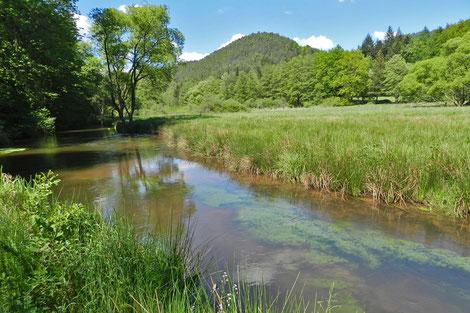 Пфальцский лес река Лаутер