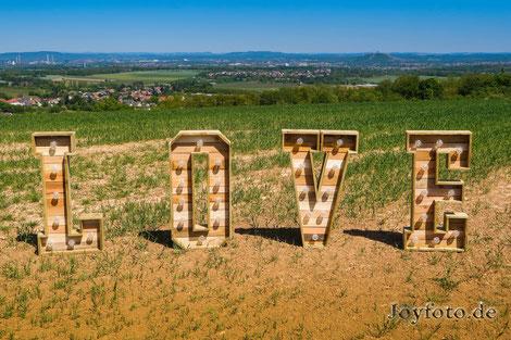 Tolles Hochzeitsgeschenk - XXL Buchstaben
