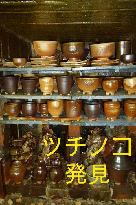 武州熊谷ひみこ窯 ツチノコ発見!