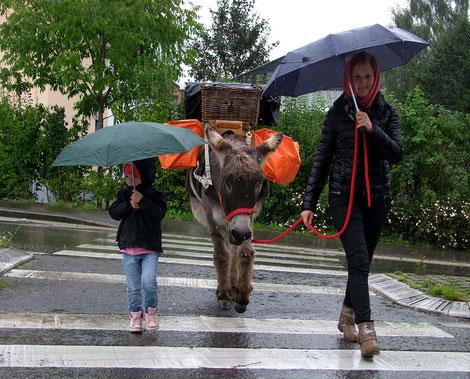 Sommer 2014 - da hat uns der Regen unterwegs überrascht.