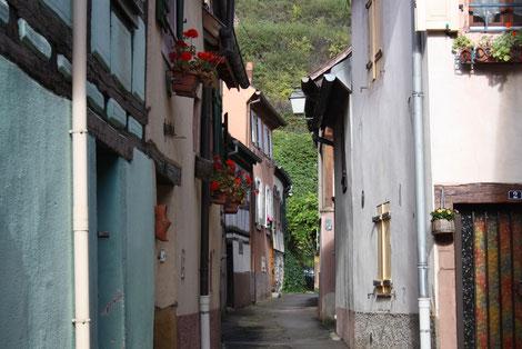 Weinprobe im Elsass, Frankreichreisen, Themenreisen