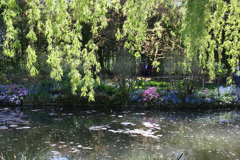 Kulturreisen, Frankreichrreisen, Gartenreisen