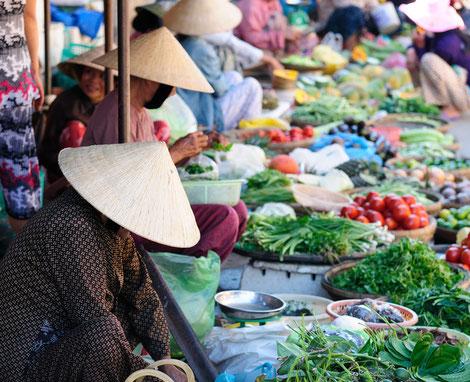 Vietnamreise 2016, Studienreise für Genießer