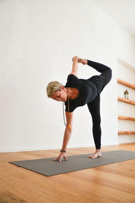 Yoga Workshops, Wissen, Philosophie, Ayurveda, Mediation, Pranayama