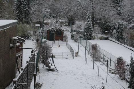 unser Garten in Weiß! ;-)))