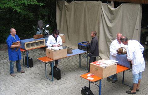 Zuträger Christian Binoth, Preisrichterin Manuela Kimmig, Zuträger Thomas Riesterer sowie die Preisrichter Willi Altherr und Michael Kimmig