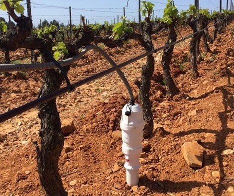 sonde capactive : installation dans les vignes avec Agralis