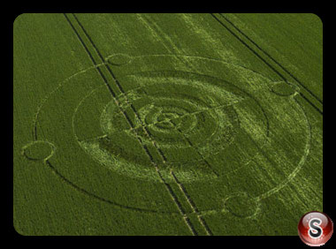 Crop circles Winchester - Hampshire 2017