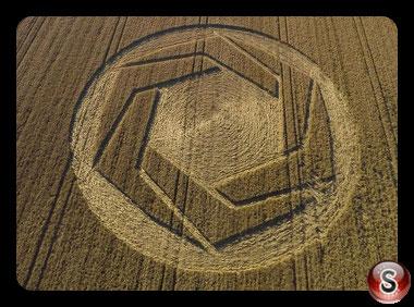 Crop circles Cheesefoot Head -  Hampshire 2016