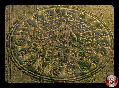 Crop circles Ansty - Wiltshire 2016