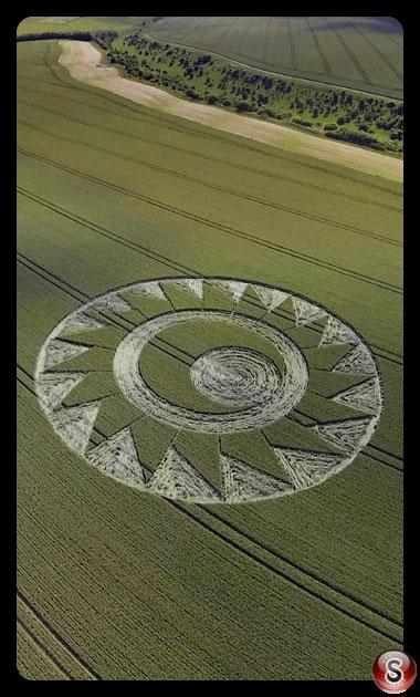 Crop circles Cheesfoot Head - Hampshire 2017