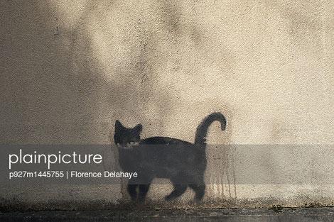 Le chat de Lyon, pochoir silhouette...