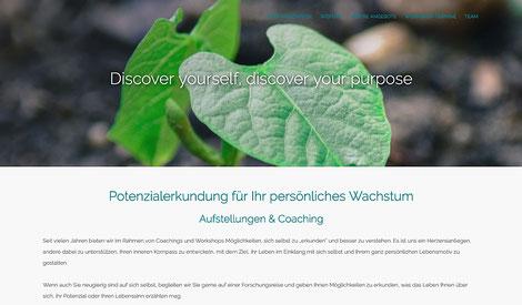 hansaconcept | Webdesign aus Lübeck für den Berater, den Unternehmensberater, den Mediator wie auch den Anbieter von Coaching, Training, Personalentwicklung in Frankfurt, Bremen, Hamburg oder auch Berlin