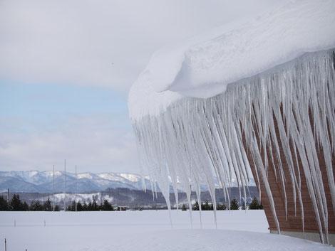名寄の氷柱