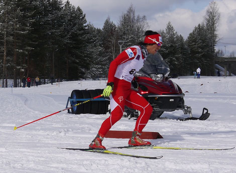 Cross Country ski Free10km