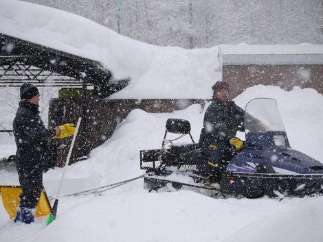 雪の中コース設営をされるスポーツ課の方々