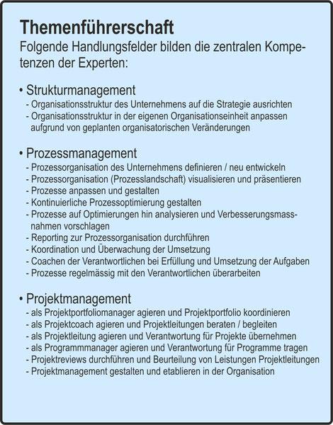 Der Organisator / Strukturmanagement / Prozessmanagement / Projektmanagement