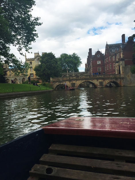 image: nina luca, swiss blogger, uk blogger, cambridge, cambridge university, cambridge college, england, british lawn, my journey, language school, ec school, punting, punting cambridge