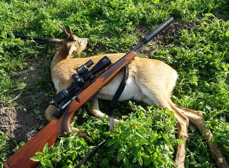 Von Morten Schultz - Hunting and wildlife - https://www.youtube.com/watch?v=utkRJ8lfoN4, CC BY 3.0, https://commons.wikimedia.org/w/index.php?curid=81590972