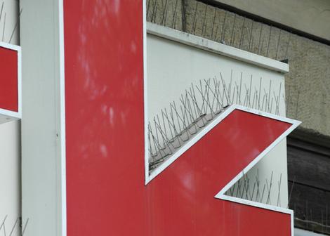 Taubenvergrämung mit Tauben-Spitzen / Vogel Spikes durch das rostfreie Taubenabwehr-System von Depigeonal