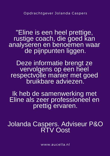 Aanbeveling door RTV Oost, Jolanda Caspers. Eline is een hele prettige, rustige coach die goed kan analyseren en benoemen waar de pijnpunten liggen. De informatie brengt ze vervolgens op een heel respectvolle manier met goed bruikbare adviezen.