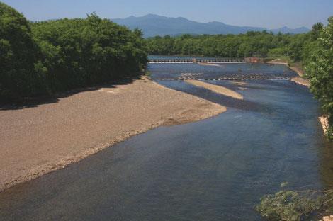 白老事業所の近くを流れる敷生川
