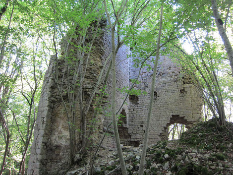 Château de Vaite