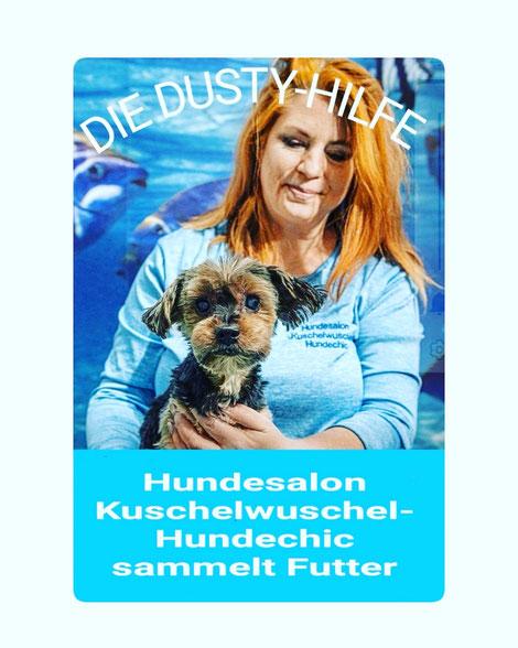 Hundesalon in Erfurt - sammelt Futter - Die Dusty Hilfe!