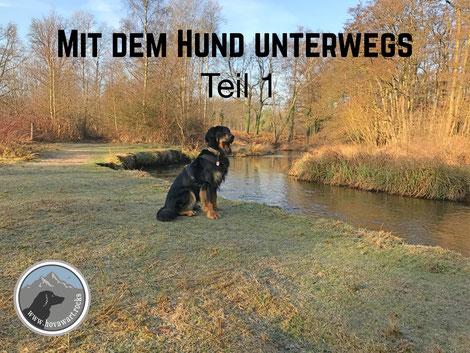 Hovawart Video, Mit dem Hund unterwegs Teil 1